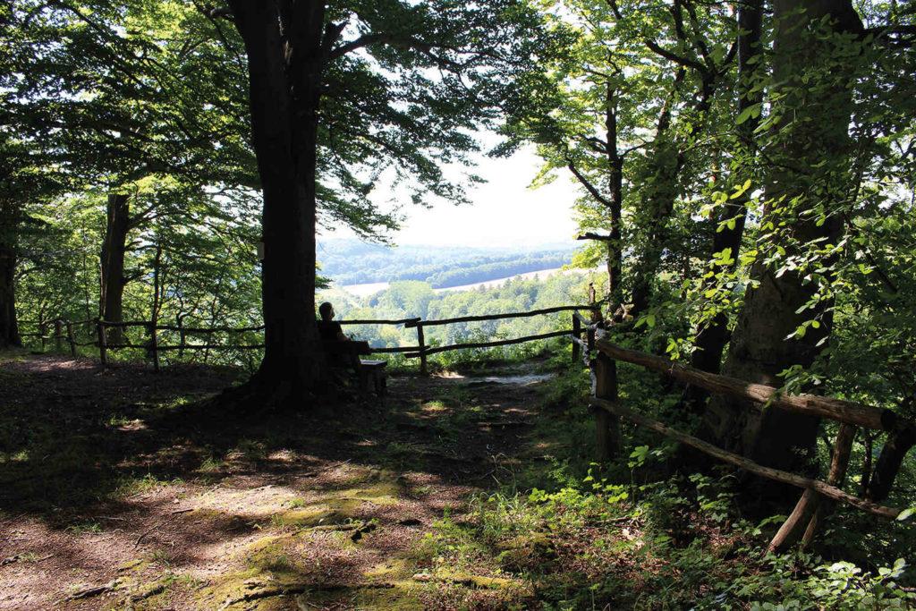 Die Ruhe genießen, Kräuterwanderung um Walkenried