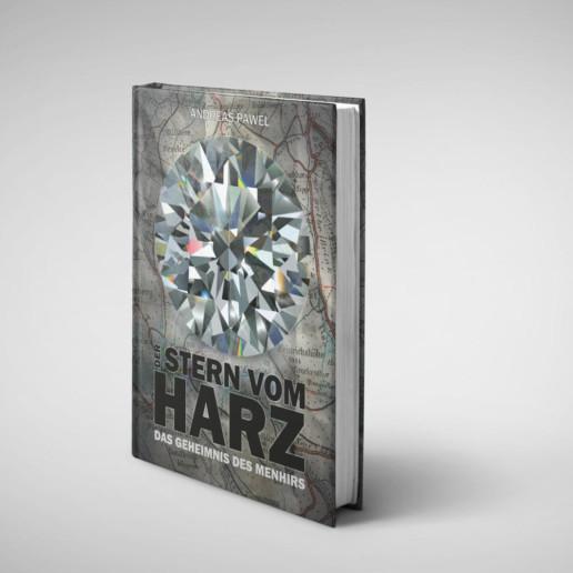 Der Stern vom Harz: Das Geheimnis des Menhirs