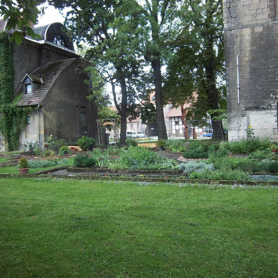 Kräutergarten Burchardikloster, Halberstadt